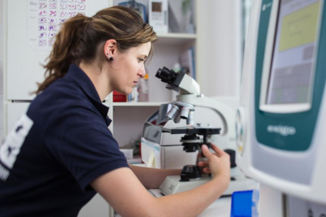 Labor - Räumlichkeiten bei der Tierarztpraxis Linth AG in Tuggen